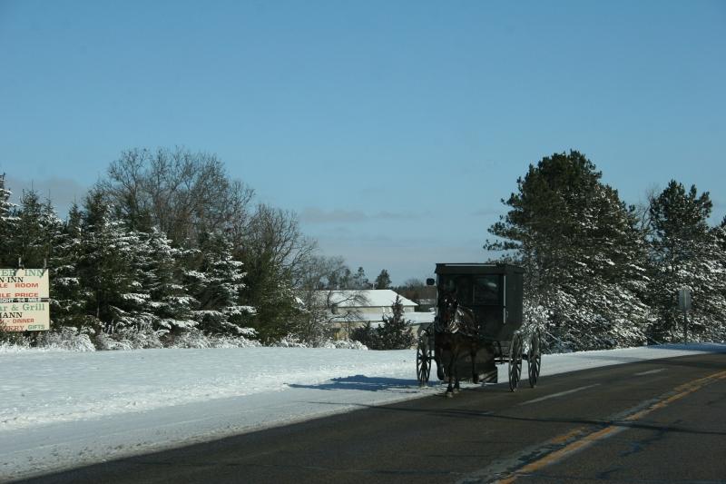 Amish buggy 1