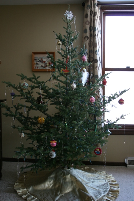 My Charlie Brown tree, an untrimmed Christmas tree purchased for $12 at a tree lot in Faribault.