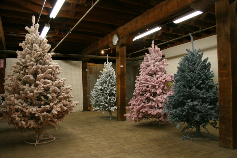 Farmer Seed offers a wide assortment of flocked trees in the most unusual hues.