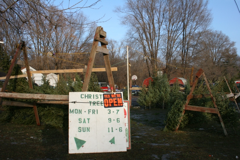 Ken leases land from the Kuntze family for his seasonal tree lot.