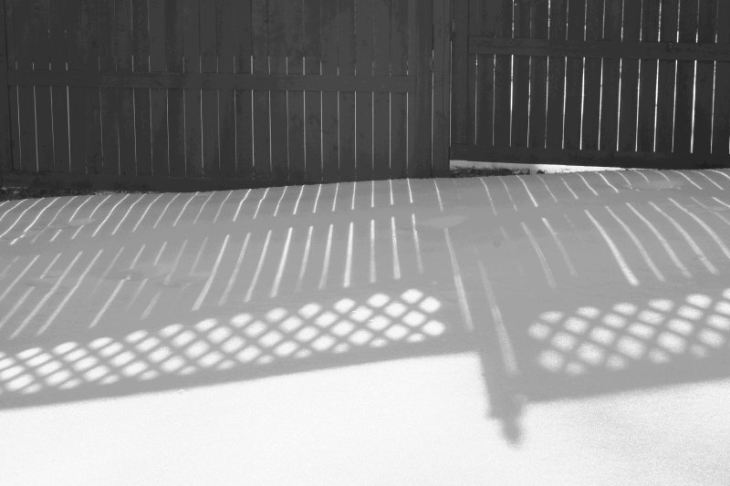 Fence shadows on the snow.