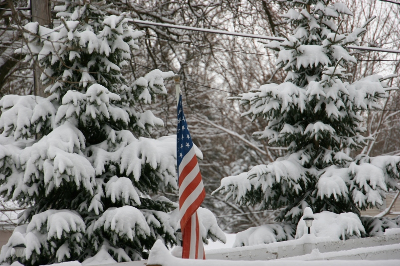 My neighbor's flag pops color into the white landscape.