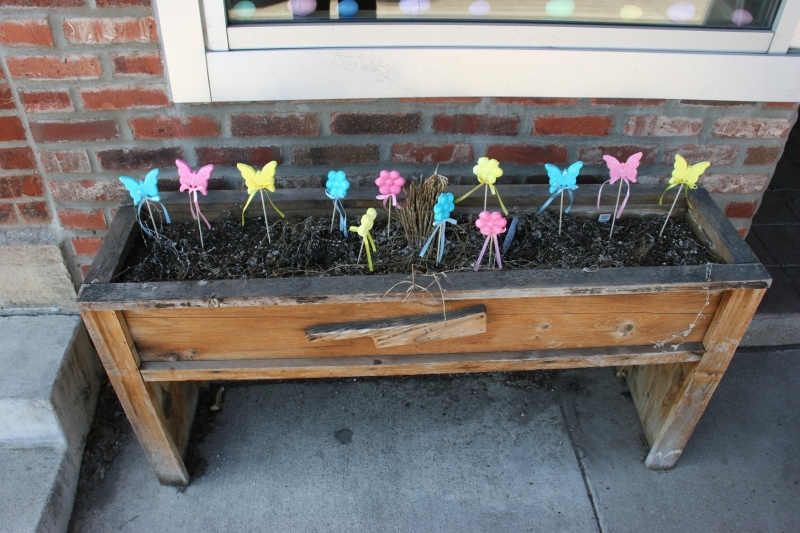 I spotted the spring scene in a flower box outside a downtown business.