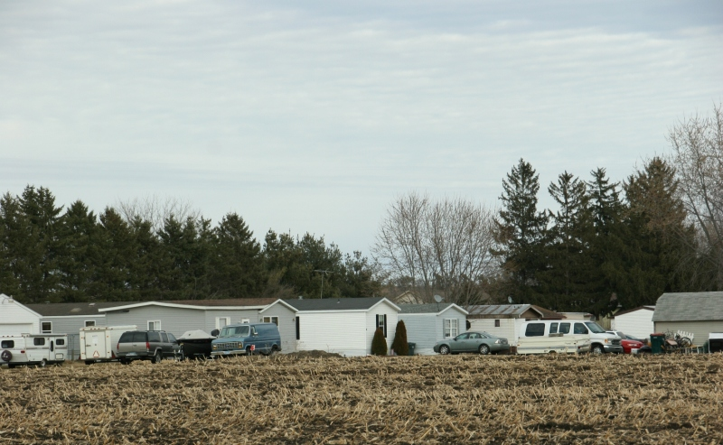 Driving out of town, I shot this image of Pine Island's mobile home court across the cornfield.