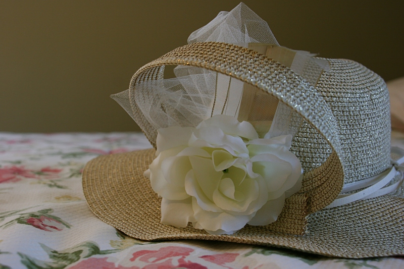 The fancy hat I purchased months ago for a Kentucky Derby party.