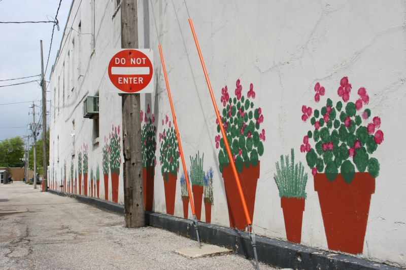 I loved the sweet surprise of these floral paintings brightening an alley in downtown Clear Lake.