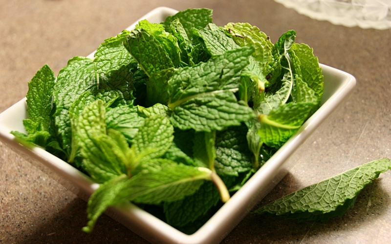 Fresh mint leaves for the mint juleps.