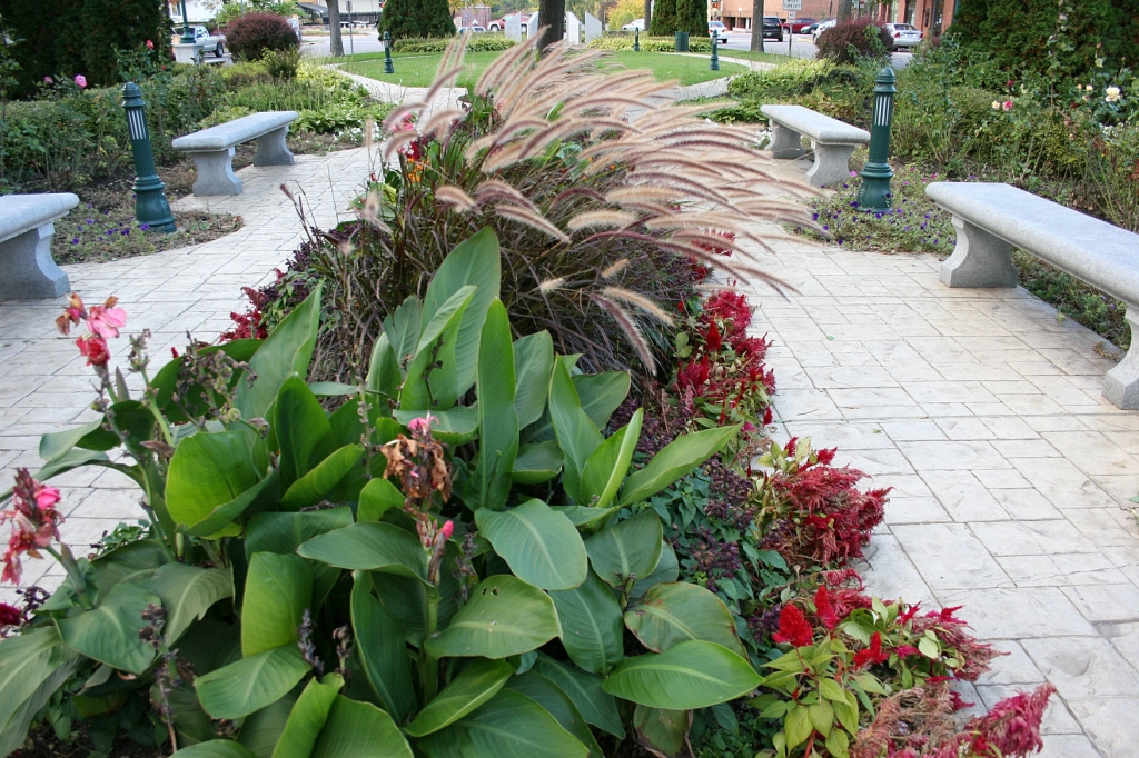Flowers, grasses and other plants grace a park in the heart of the downtown.