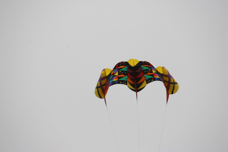 The vivid colors of this kite were a welcome visual jolt in the grey sky.