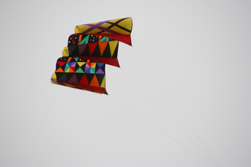 One of two kites spotted upon arriving at Forest City.