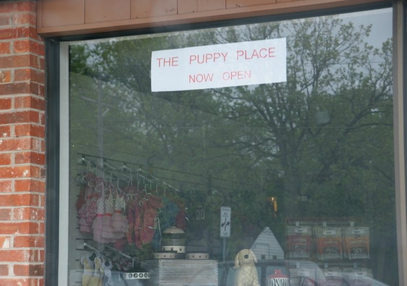 Right next to Papa Murphy's Pizza on Rice Street, the family-owned and operated The Puppy Place offers all things canine, including puppies for sale.