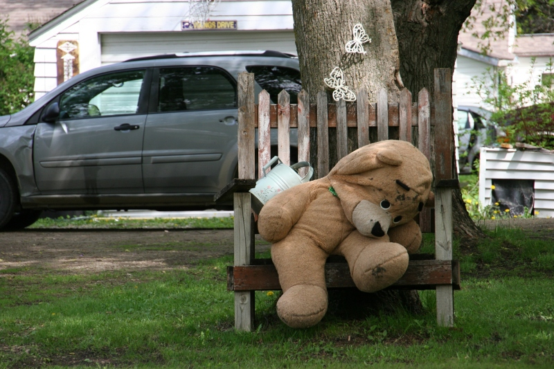Geneva, bear on bench