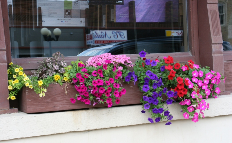Something as simple as this windowbox adds visual interest to downtown New Prague.