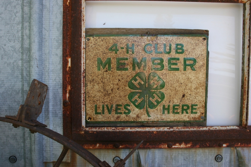 Not sure if this 4-H sign is for sale.