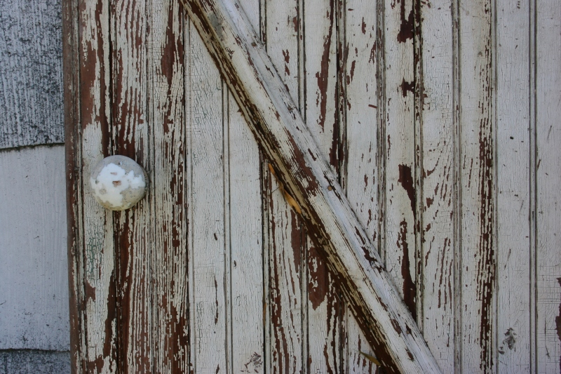 Lots of rustic and country, including this old door.