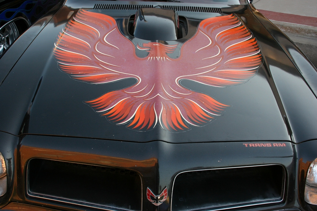 Art on the hood of a Thunderbird.