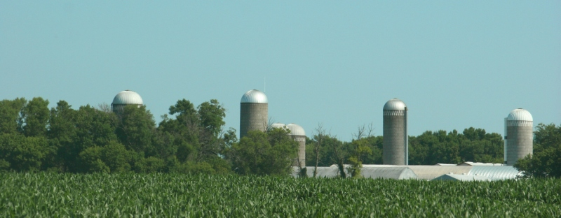 Silos mark the rural skyline on a farm in the Prior Lake area.