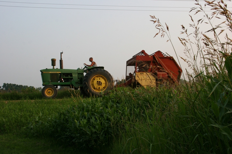 The John Deere tractor roared by my brother's place much of the afternoon