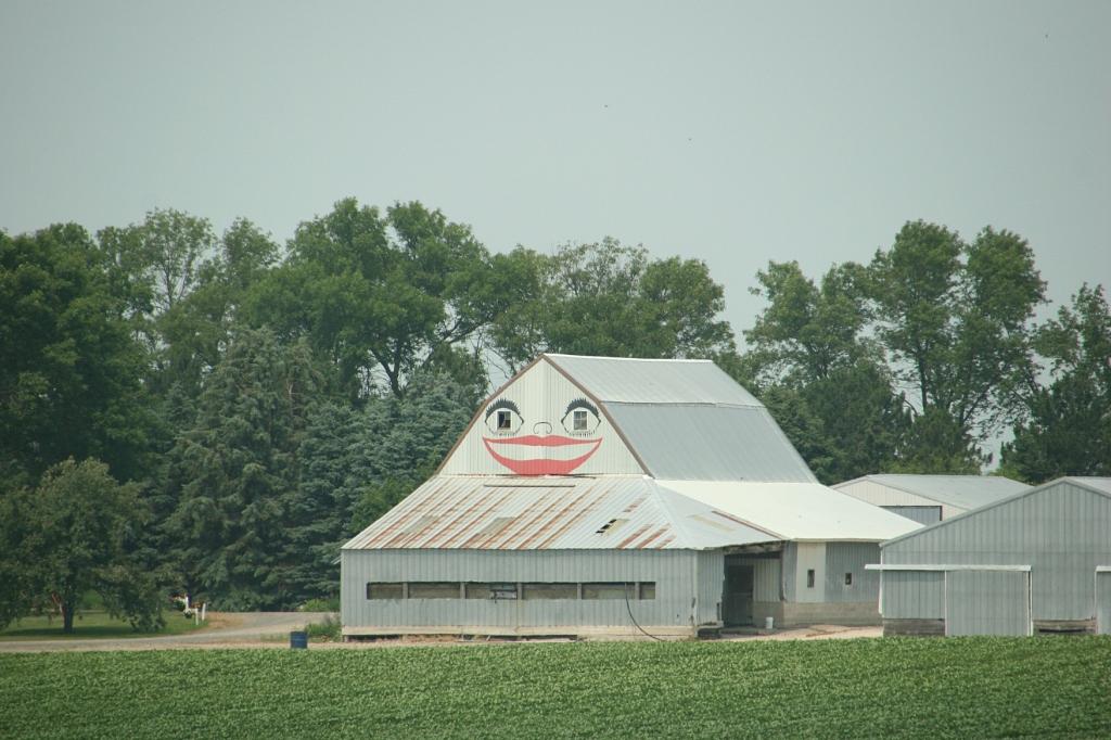 This barn along U.S. Highway 14 west of Sleepy Eye always catches my eye.