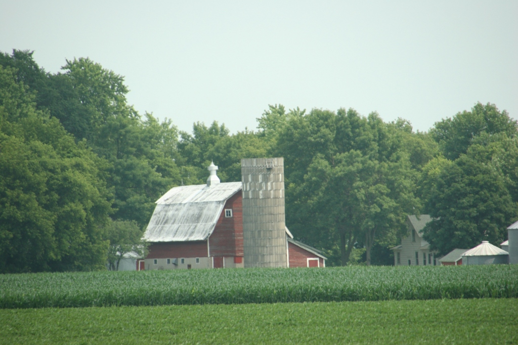 There are so many well-kept barns along U.S. Highway 14, this one between Mankato and Nicollet.