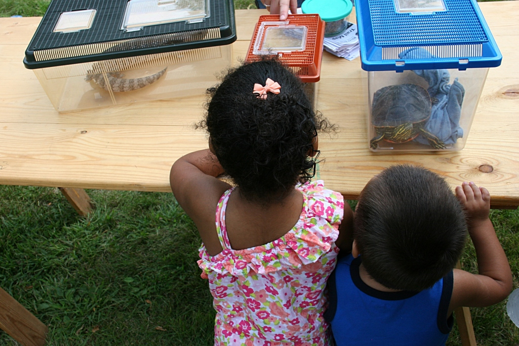 River Bend Nature Center showed up with several critters, including a snake and turtle.