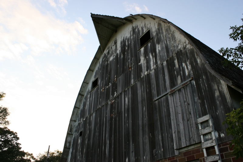 The barn rises high above the garden.