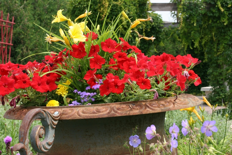 Gigantic urns overflow with flowers.