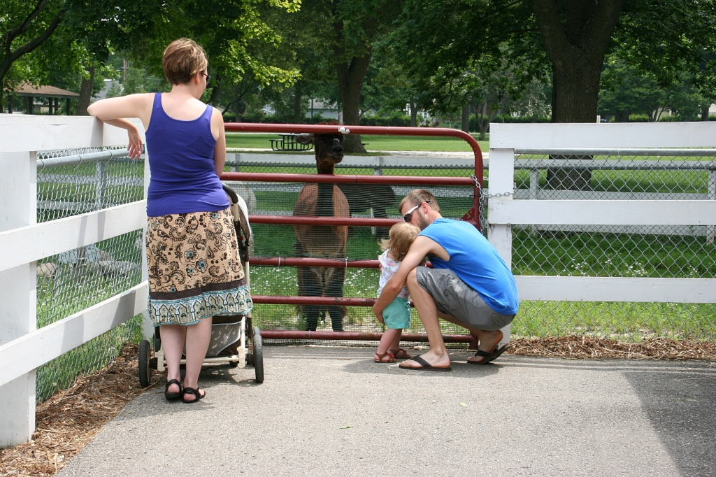 A young family checks out the alpacas.