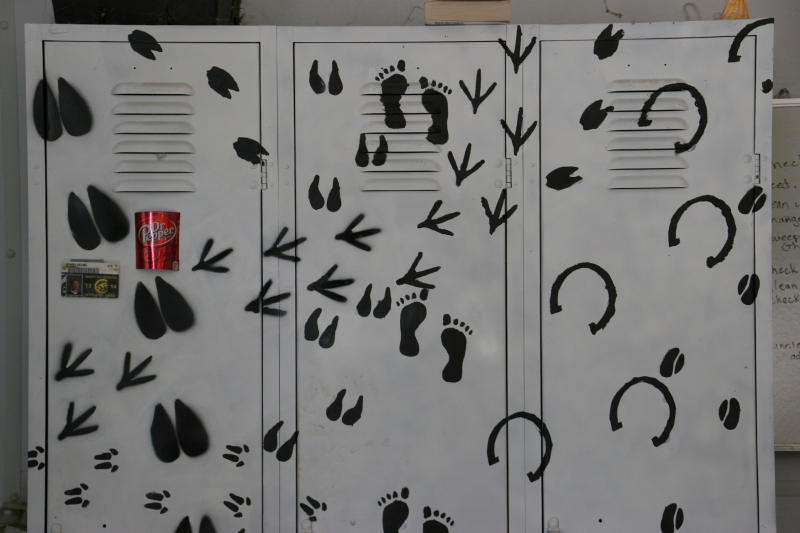 Appropriately printed lockers.