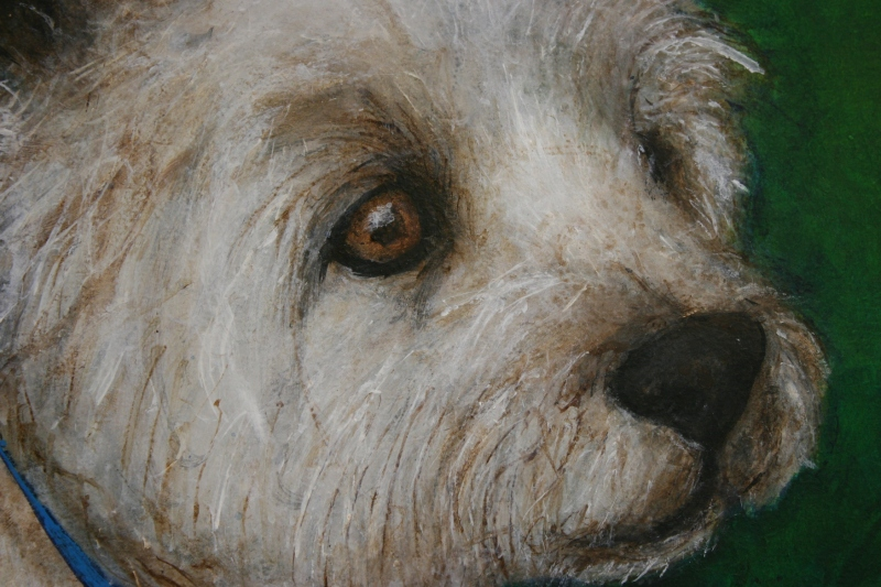 "Murphy's face in ""Murphy at Central Park,"" acrylic on hardboard by Julie Fakler"