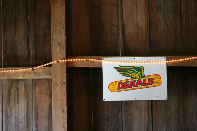 Even this Dekalb sign inside the barn generated memories of Dekalb corn growing in my dad's fields and me detasseling corn for this seed company.