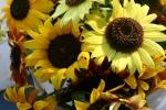 Market, sunflowers #31