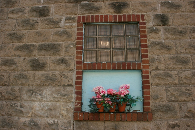 Even this window is incorporated into the garden with a windowbox.