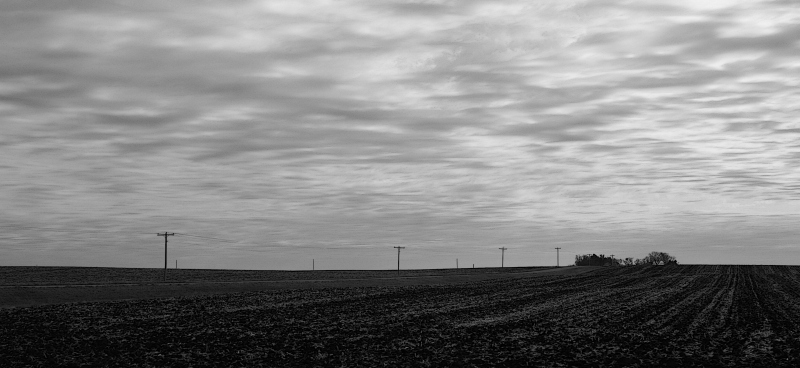 A bare field near Belview in southwestern Minnesota.