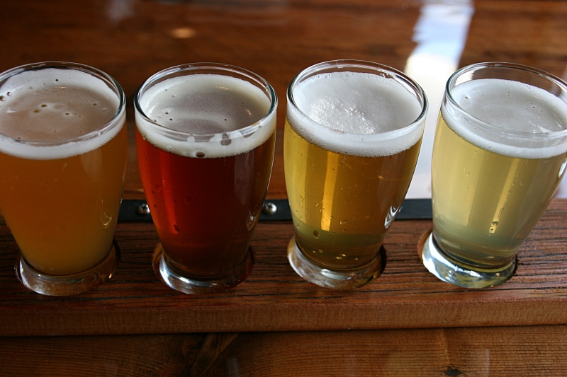 A flight at Turtle Stack Brewery.