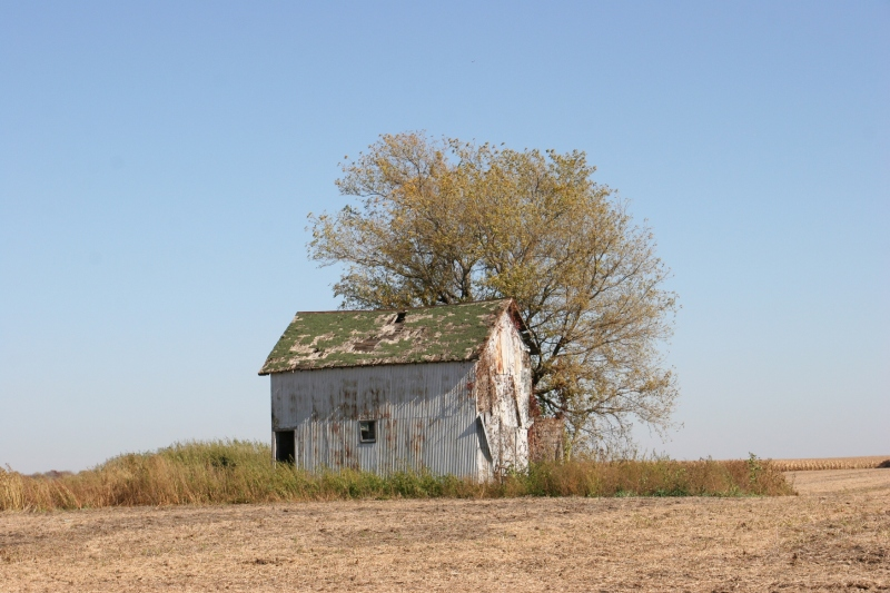 I always wonder at the abandonment of buildings. Why? And by whom?