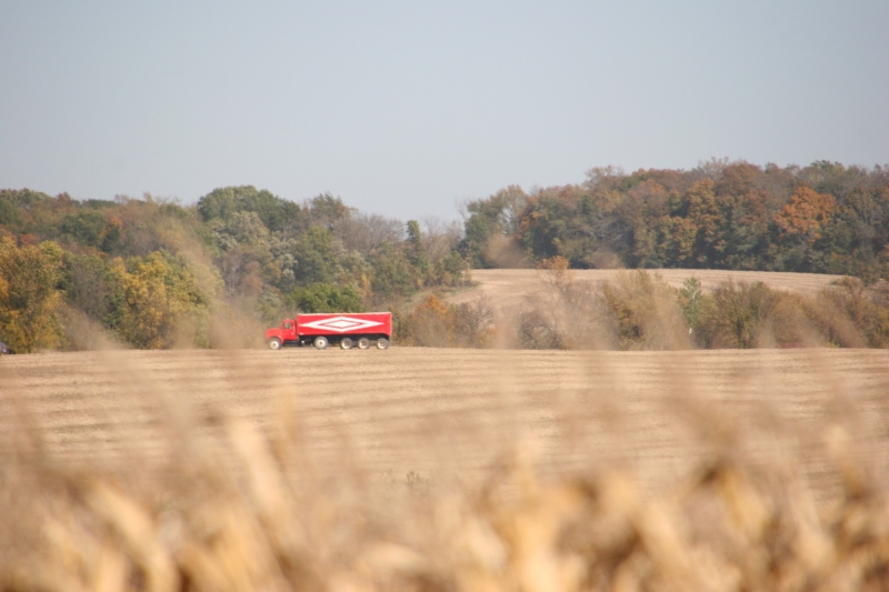 A grain truck awaits the harvest in a field.
