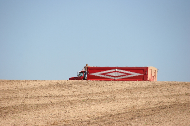 A farmer pauses to check his grain truck during harvesting.