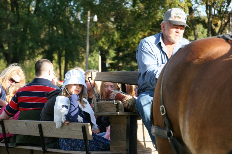 Mike and Pat Fuchs brought their horses and wagon for free rides.