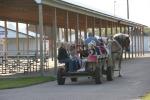 Museum, 57 wagon ride2