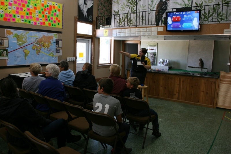 Owl Center visitors compete in a quiz show that teaches them all about owls.