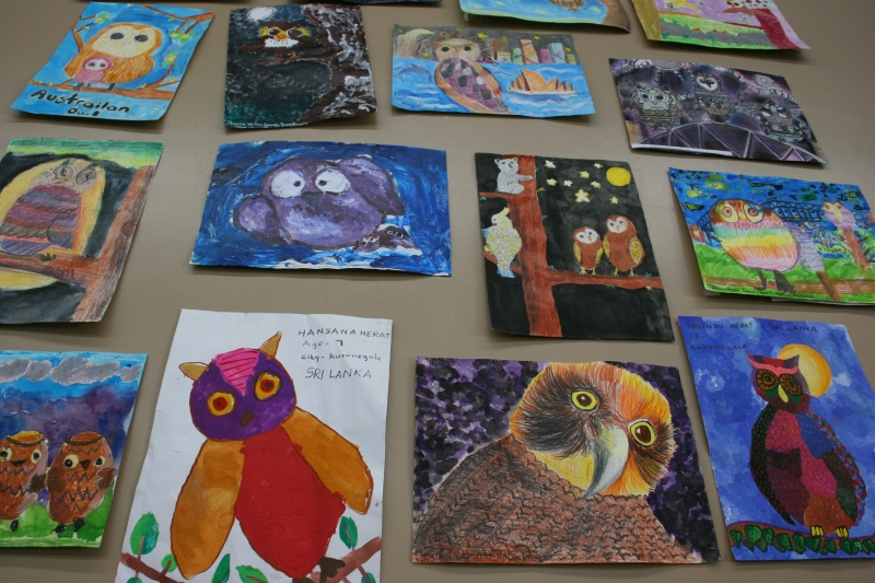 Owl art, from all over the worlds, decorates the center's walls.