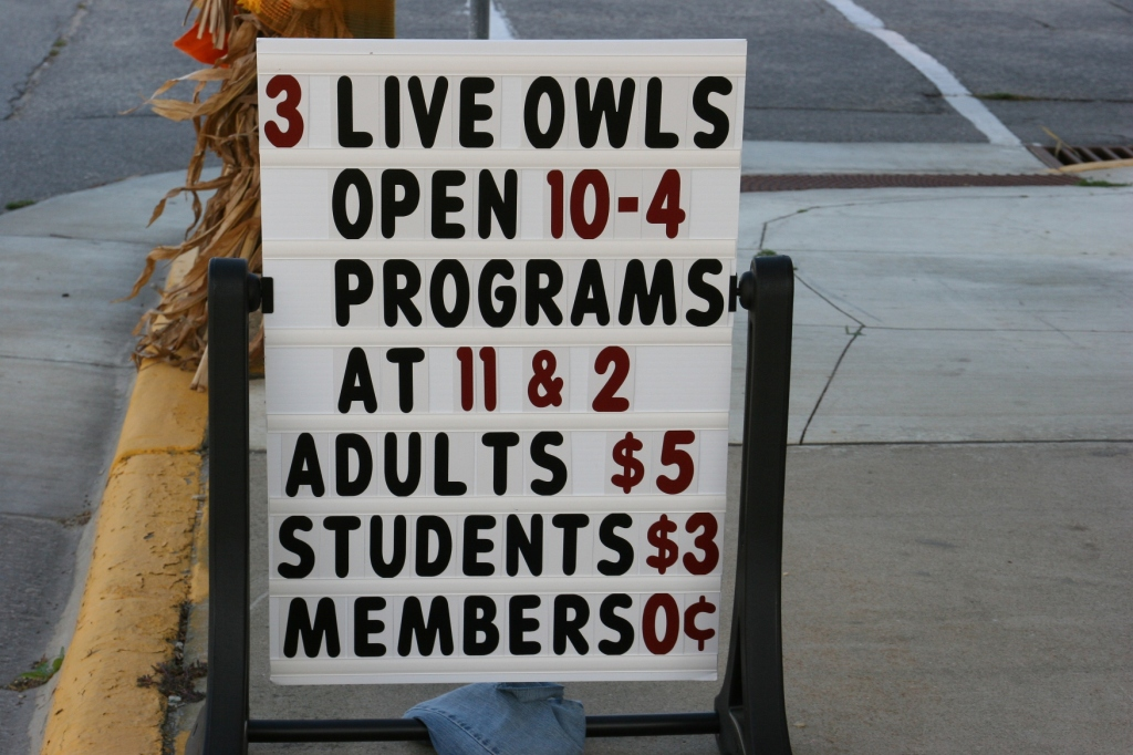 Time your visit for the live owl programs.