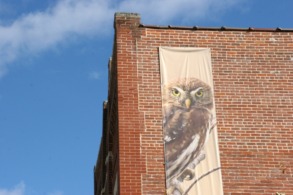 A banner on the side of the International Owl Center helps visitors find the building in downtown Houston.
