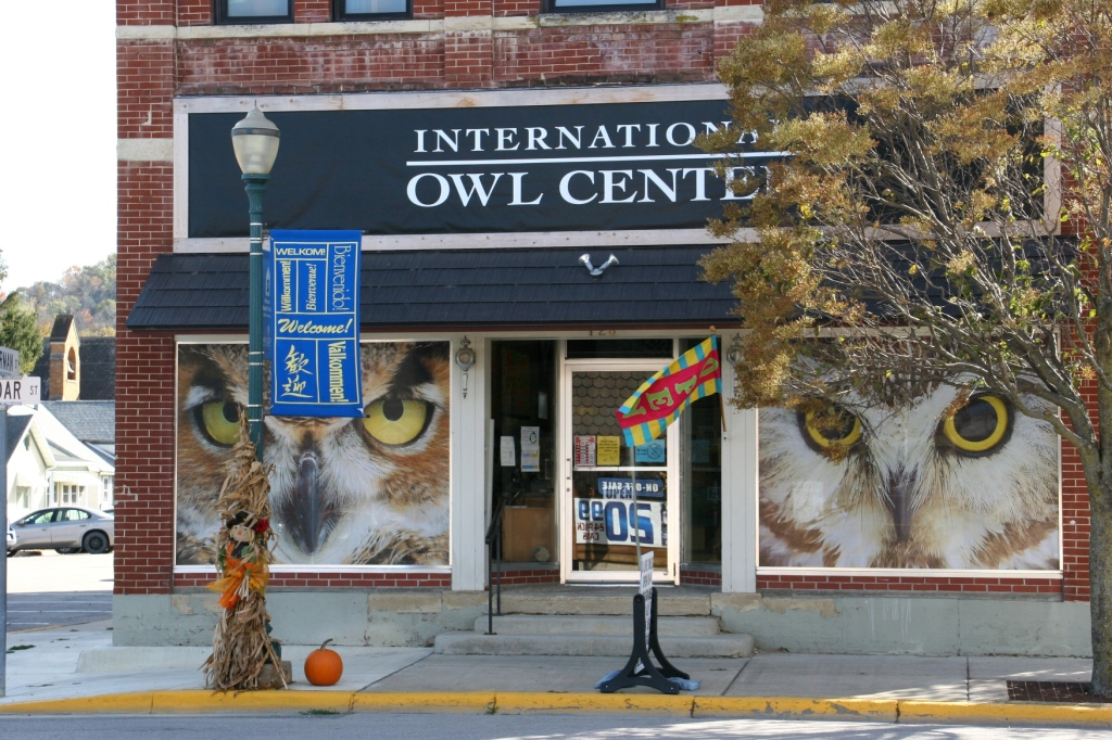You can't miss this eye-catching window front. The International Owl Center is hoping to construct a new building to further its mission of advancing the survival of wild owls through education and research.