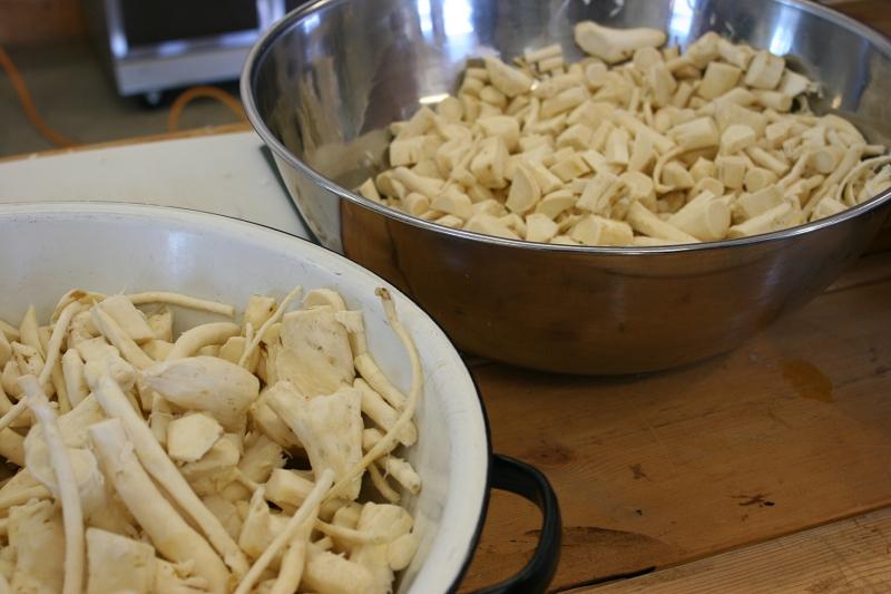 STEP SIX: Using knives, we slice the horseradish into chunks.