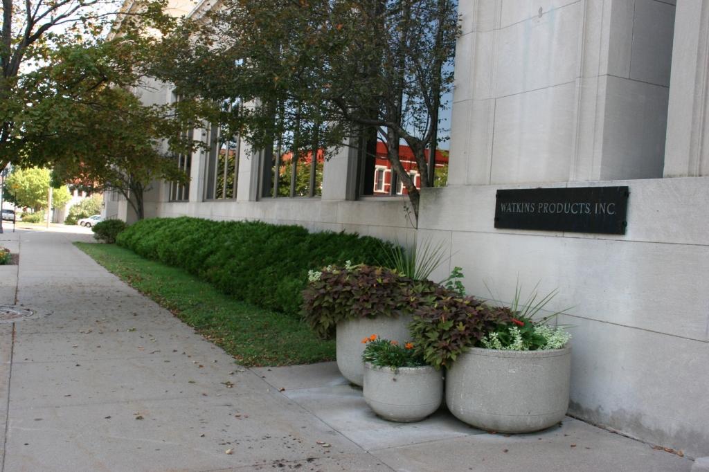 Greenery outside the Watkins' office building.