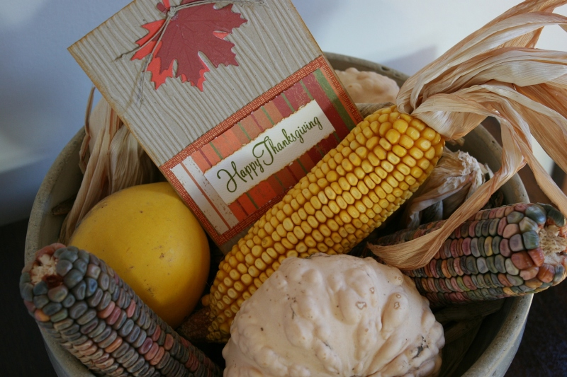 I created this Thanksgiving display in a stoneware bowl. My sister-in-law Rena created the Thanksgiving card.
