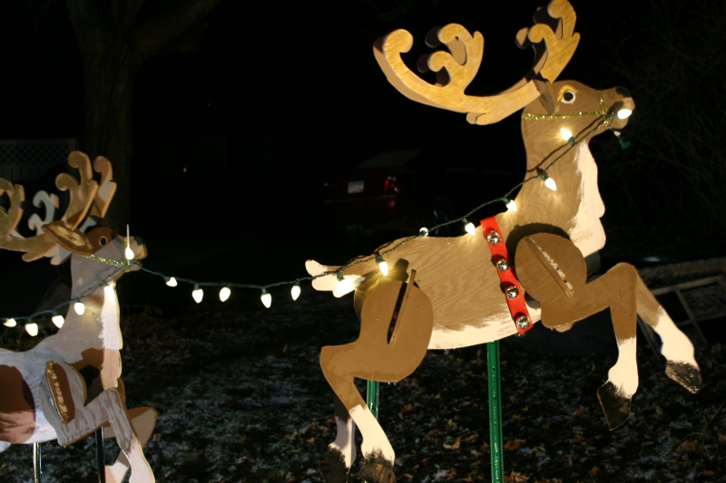 Holiday lights, 21 reindeer