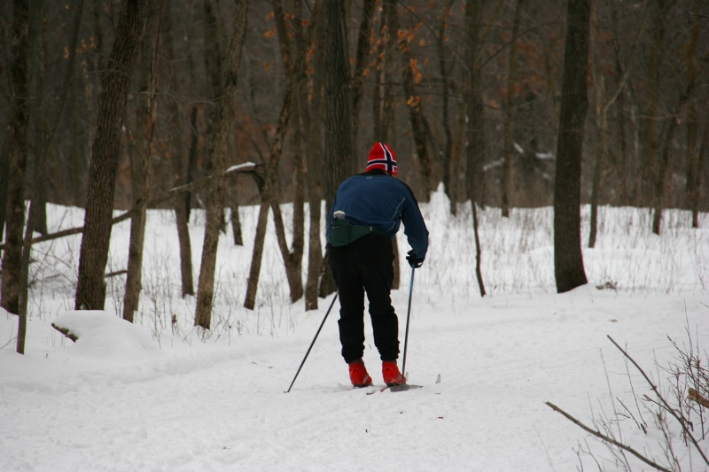 Nature Center, 11 single cross country skier